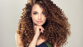 Jonge, bruine haired vrouw met dichte, elastische krullen in een kapsel stock afbeeldingen