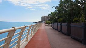 Jonge dame die die dichtbij overzees langs kustlijn lopen met palmen, rijke toevlucht wordt geplant stock video