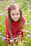 Jonge dame in rood Royalty-vrije Stock Afbeeldingen