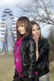 Jonge dames en een ferriswiel [2] Royalty-vrije Stock Fotografie