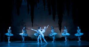 Jonge dansersballerina's in klassen klassieke dans, ballet Stock Foto's