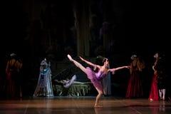 Jonge dansersballerina's in klassen klassieke dans, ballet Stock Foto