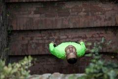 Jonge die atleet het glimlachen vóór recreatie wordt voorbereid stock fotografie