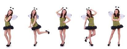 Jonge die vrouw in bijenkostuum op wit wordt ge?soleerd royalty-vrije stock afbeeldingen
