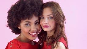 Jonge die vrouwenstudio op roze vrouwen` s dag het lachen close-up wordt geïsoleerd stock videobeelden