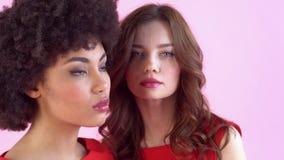 Jonge die vrouwenstudio op roze vrouwen` s dag wordt geïsoleerd die camera ernstig close-up kijken stock footage