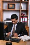 Jonge directeur Royalty-vrije Stock Afbeeldingen