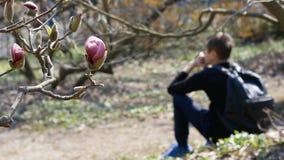 Jonge droevige kerel met een rugzakzitting in het park op een achtergrond van magnolia's stock footage