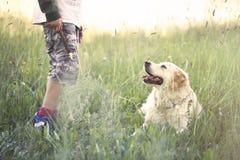 Jonge eigenaar die zijn hond teacheing het spel van stok royalty-vrije stock afbeelding