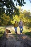 Jonge familie die in park met hun Duitse herdershond lopen, die handen houden stock afbeeldingen