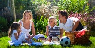 Jonge familie die pret in een picknick heeft Stock Foto's