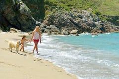 Jonge familie die pret op het strand heeft Stock Foto's