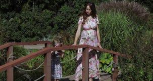 Jonge familie op de houten brug stock footage