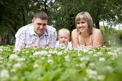 Jonge familie in park Stock Afbeeldingen