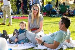 Jonge Families bij een parkpicknick stock afbeeldingen