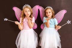 Jonge feekoninginnen Royalty-vrije Stock Afbeelding