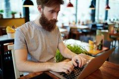 Jonge Financiële Manager Working van Coffeehouse stock afbeeldingen