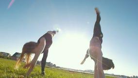 Jonge flexibele vrouwen die synchroon acrobatisch wiel op het gras uitvoeren bij zonnige dag stock videobeelden