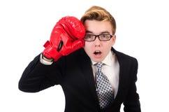 Jonge geïsoleerde zakenmanbokser Stock Foto