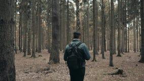 Jonge Gebaarde Mens die in Autumn Forest With een Toeristische Rugzak, Autumn Style, Reizende Levensstijl lopen stock videobeelden