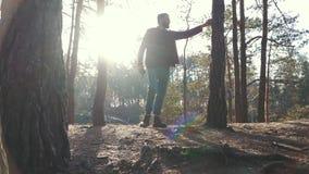 Jonge gebaarde mens met een bijlgang in bos en het cuting van een boom Ongeschoren houtvester met een bijl in openlucht stock videobeelden