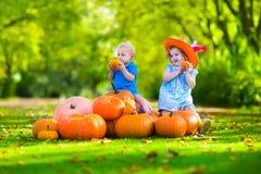 Jonge geitjes bij Halloween-pompoenflard Stock Foto's