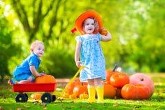 Jonge geitjes bij Halloween-pompoenflard Royalty-vrije Stock Afbeeldingen
