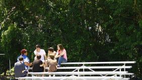 Jonge geitjes in Bleachers Stock Afbeelding