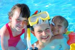 Jonge geitjes in de pool Stock Foto