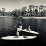 Jonge geitjes die bij Waterverftoevlucht paddleboarding stock afbeeldingen