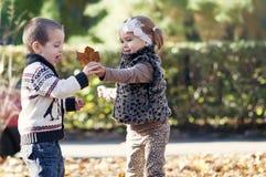 Jonge geitjes die in de herfstpark spelen Stock Foto