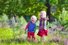 Jonge geitjes die in de herfstpark spelen Royalty-vrije Stock Foto's