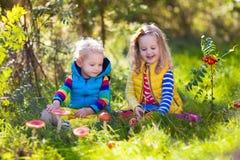 Jonge geitjes die in de herfstpark spelen Stock Foto's