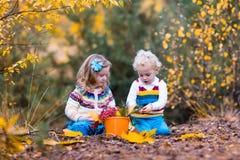 Jonge geitjes die in de herfstpark spelen Royalty-vrije Stock Foto