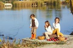 Jonge geitjes die dichtbij het meer in de herfst spelen Royalty-vrije Stock Fotografie