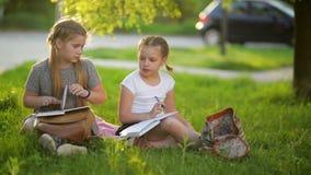 Jonge geitjes die een boek in de zomertuin lezen Peuter en vrienden die spelen leren Meisjes die hun thuiswerk doen stock video