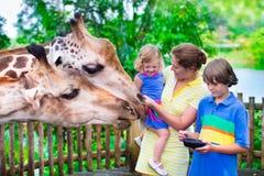 Jonge geitjes die giraf in een dierentuin voeden stock afbeelding