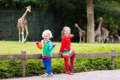 Jonge geitjes die op giraf letten bij de dierentuin royalty-vrije stock foto's