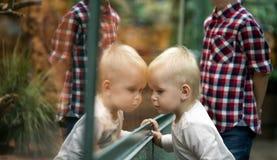 Jonge geitjes die op reptielen in terrarium letten door glas royalty-vrije stock fotografie