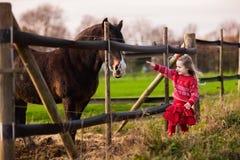 Jonge geitjes die paard op een landbouwbedrijf voeden Stock Foto's