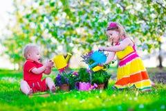 Jonge geitjes in een tuin met bloeiende kersenbomen Stock Foto's