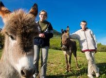 Jonge geitjes en dokeys royalty-vrije stock afbeelding