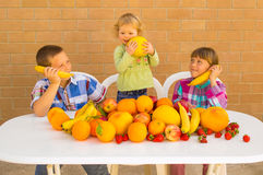 Jonge geitjes en vruchten stock foto