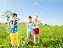 Jonge geitjes en water Stock Foto