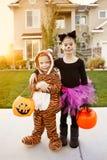 Jonge geitjes Gaande Truc of het Behandelen op Halloween Stock Fotografie