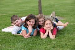 Jonge geitjes in het Gras Royalty-vrije Stock Foto's