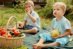 Jonge geitjes met groenten en vruchten Stock Fotografie