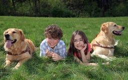 Jonge geitjes met honden Stock Foto