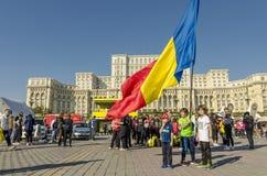 Jonge geitjes met Roemeense vlag Stock Afbeeldingen