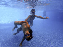 Jonge geitjes onderwater in de pool Stock Fotografie